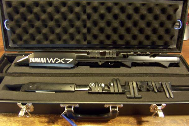 Double WX Instrument Case